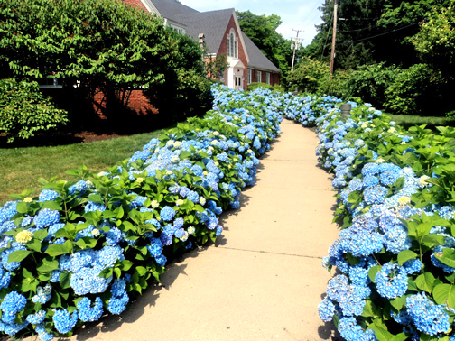 South Shore Conservatory Receives $133K MA CFF Matching Grant