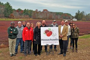 Massachusetts Cranberry Industry Launches State-Grown Cranberry Insignia